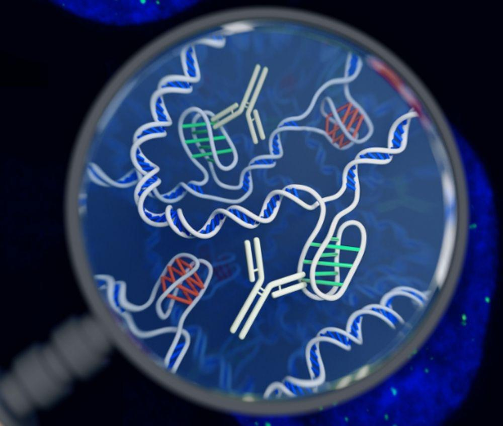 an illustration of DNA
