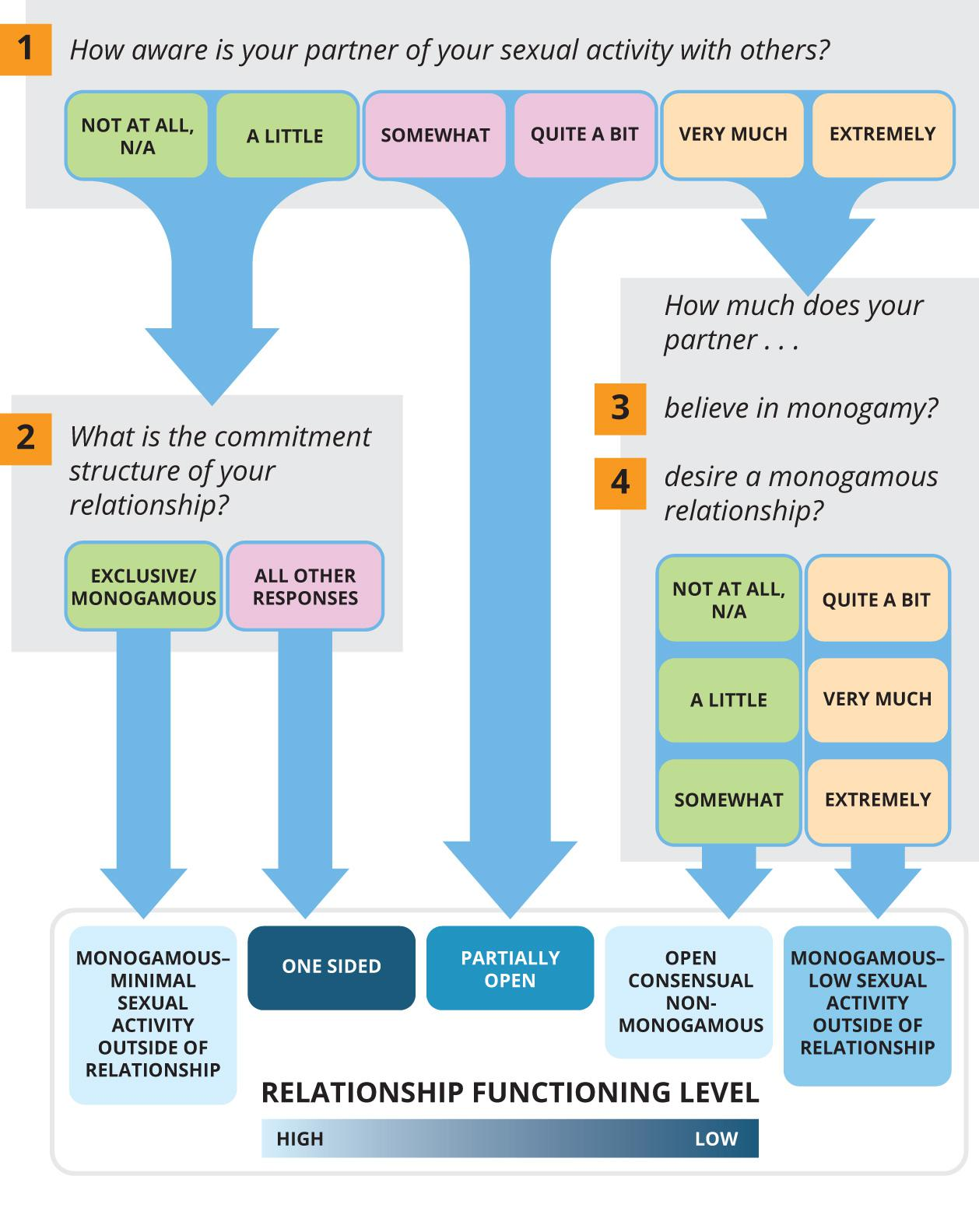 """Flowchart steps through a four-step process. Step 1: How aware is your partner of your sexual activity with others. The options are Not At All, A Little, Somewhat, Quite a Bit, Very Much, and Extremely. For the Not at All and A Little Options, the flowchat moves to the next step, """"What is the commitment structure of your relationship? There are two options there, 'Exclusive/Monagamous and All Other Responses. For the Very Much and Extremely Options in step one, the flow chart goes to the next step, How much does your partner believe in monogamy or desire a monogamous relationship? On set of answers says Not At All, A Little, or Somewhat. And another set of answers says Quite a Bit, Very Much, and Extremely. Each of these five paths point down to a row at the bottom of the chart that represents a continuum of relationship functioning success, with from High to Low."""