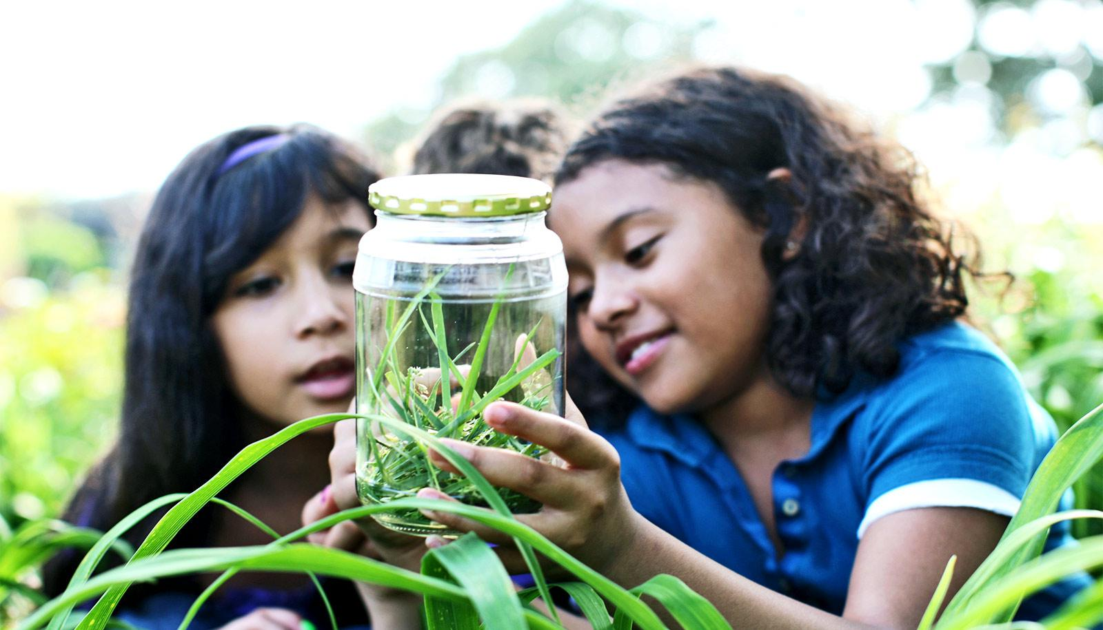 Two girls look into a jar with grass and an insect while outside