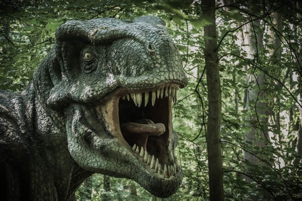 A Tyrannosaurus rex