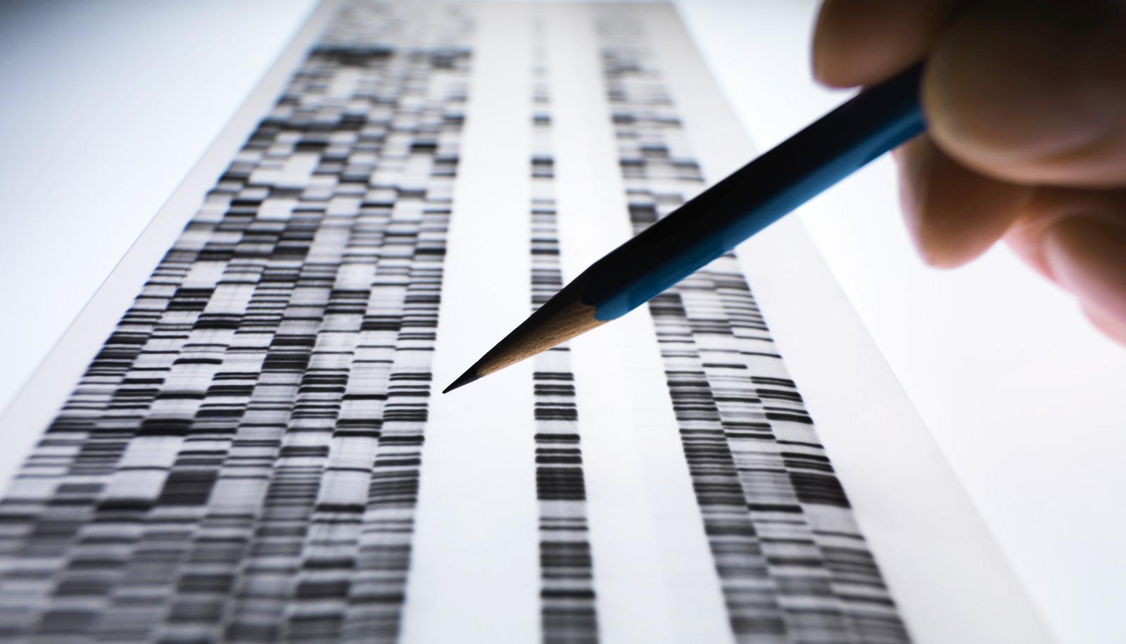 genes pencil hand