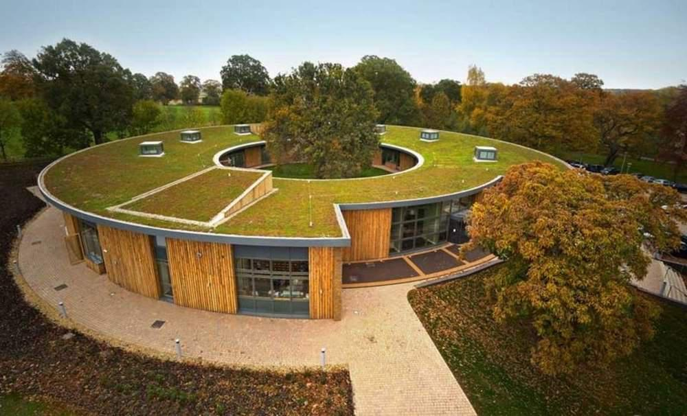 Green roofs extreme heat island management