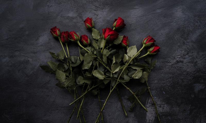 Winning An Emotional Struggle with Partnership, Love and Self-Love, by Jennie Peterson. Photograph of roses by Annie Spratt