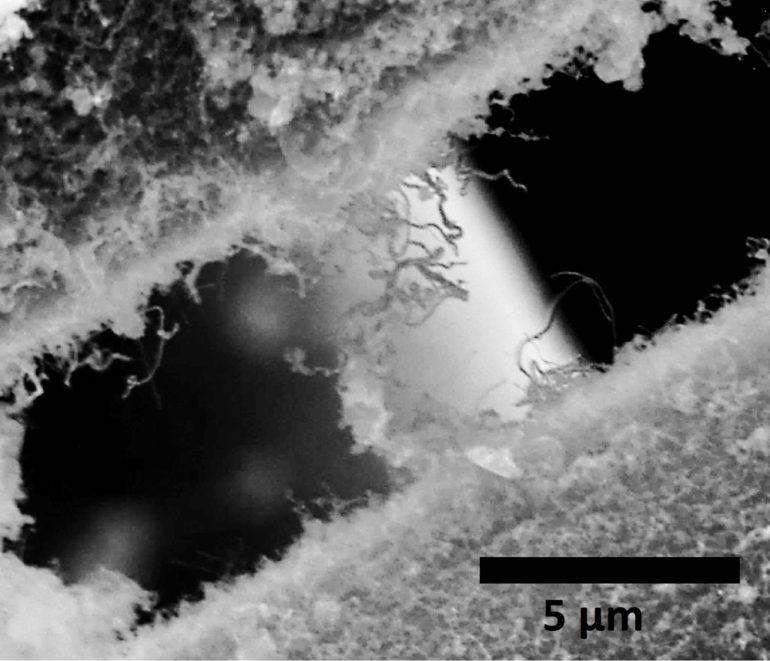 nanotubes and carbide fibers