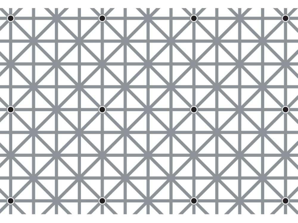 black dot illusion