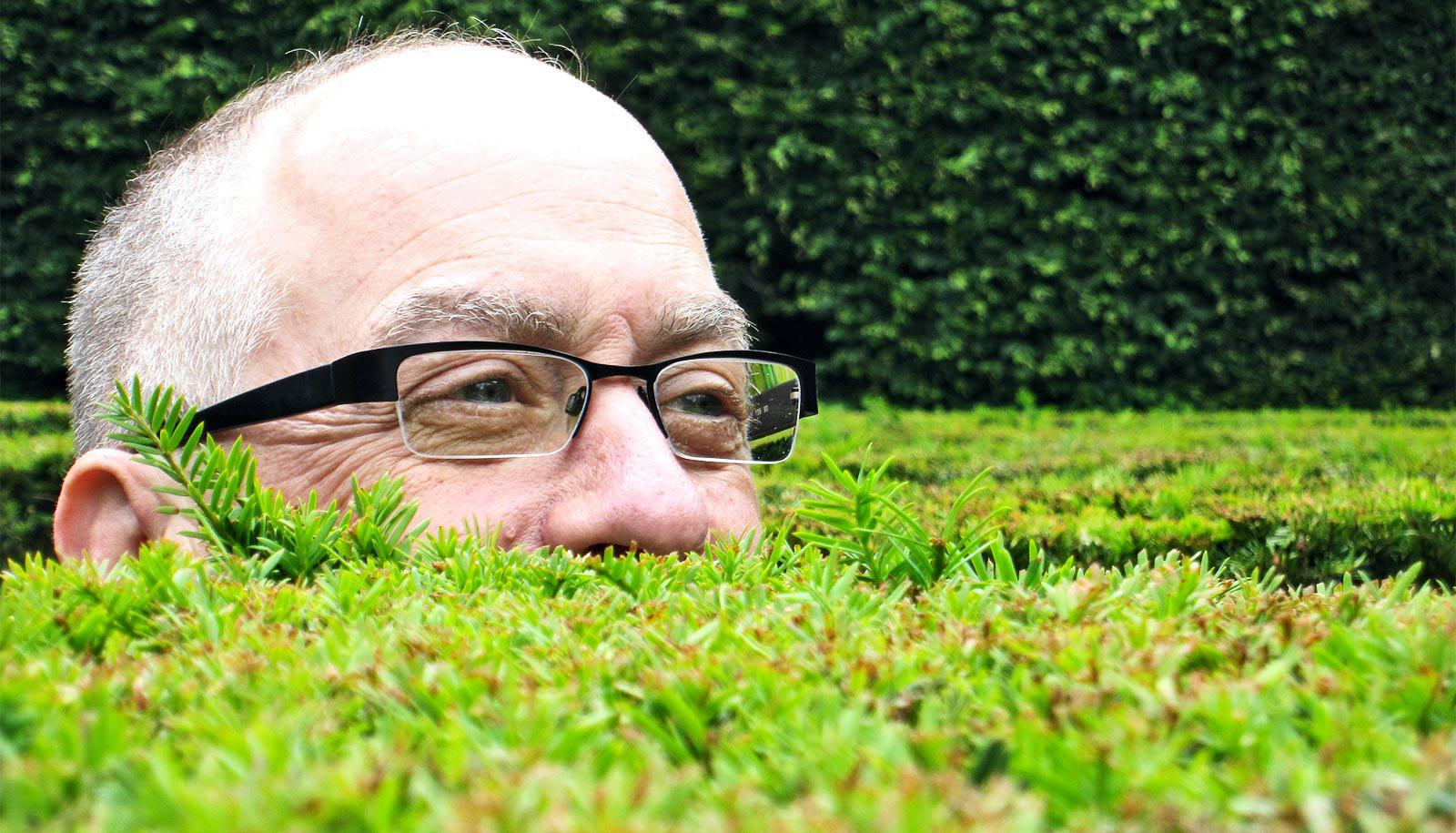 A man wearing glasses pokes his head above a hedge maze