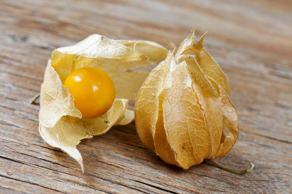two groundcherries on a wooden surface