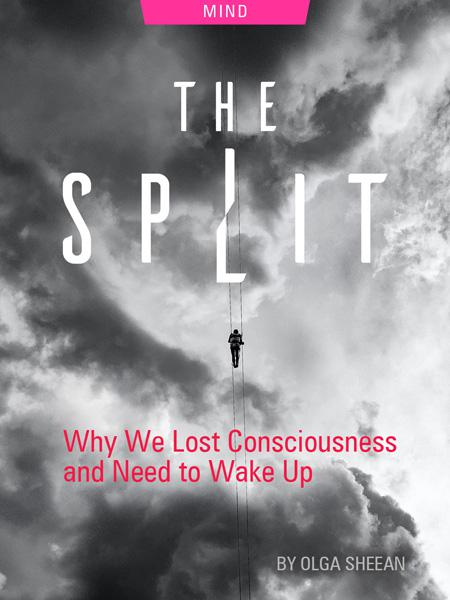 The Split: Why We Lost Consciousness and Need to Wake Up, by Olga Sheean. Photograph of man gliding in clouds by Sergio Souza