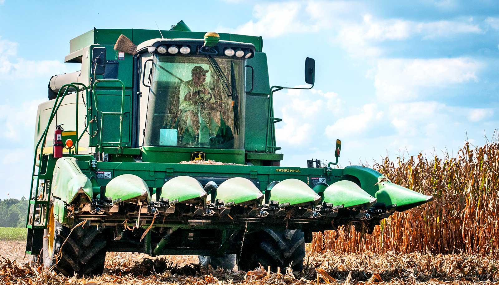 corn farmer harvest