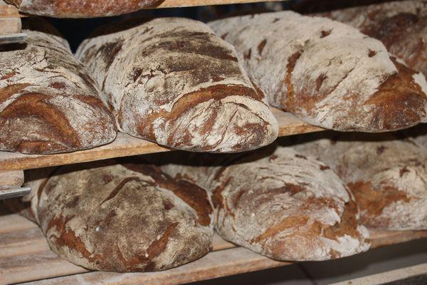 loaves of farmers bread