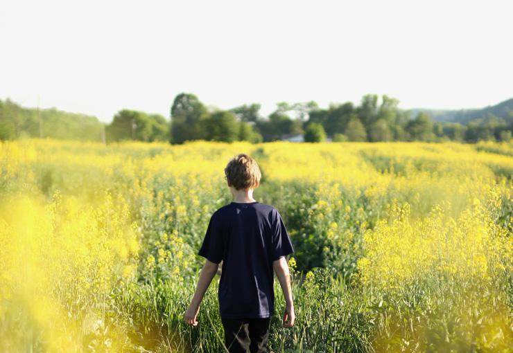 Live in Light, Photograph of boy in field by Rachael Crowe