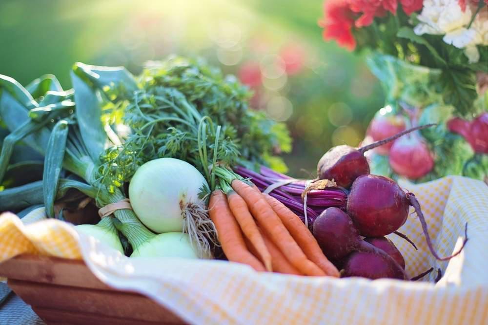 fresh produce organic