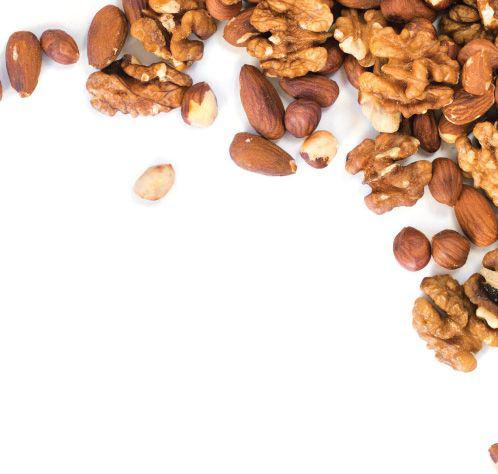 Can Eating Nuts Boost Male Fertility Scribd