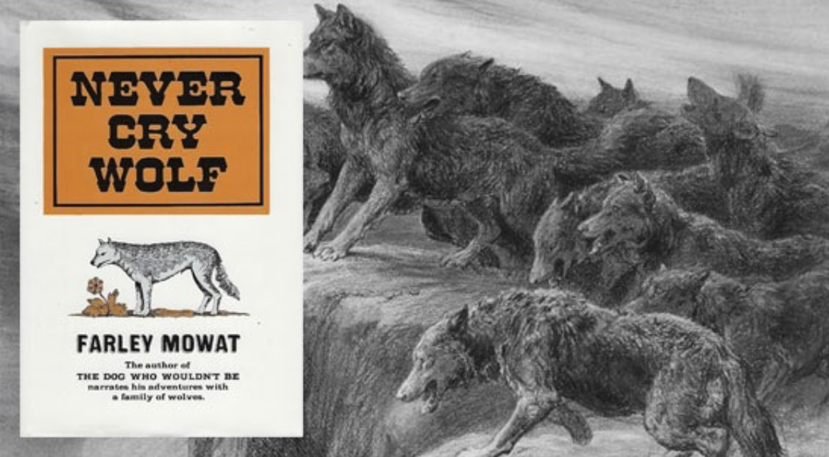 never cry wolf by farley mowart essay 08052014 never cry wolf author farley mowat dies  among his best-known works are never cry wolf, a fictional narrative about mowat living among wolves in.