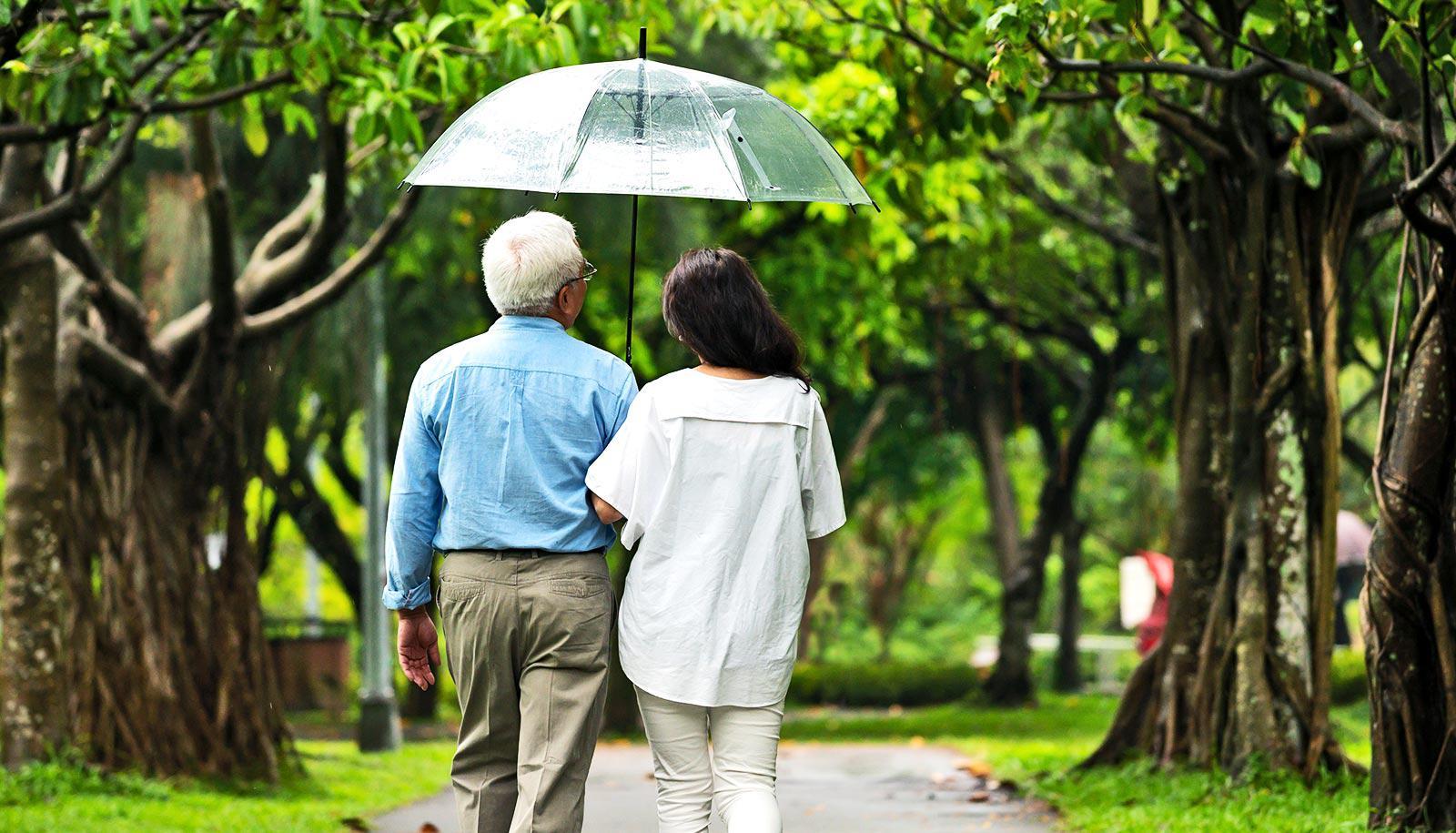 An older couple walks through a park with an umbrella