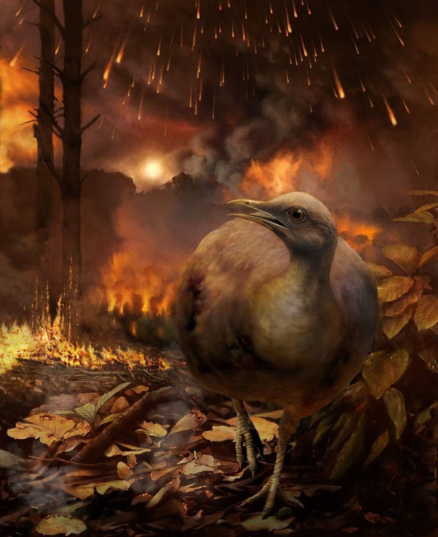 ancient bird fleeing apocalypse