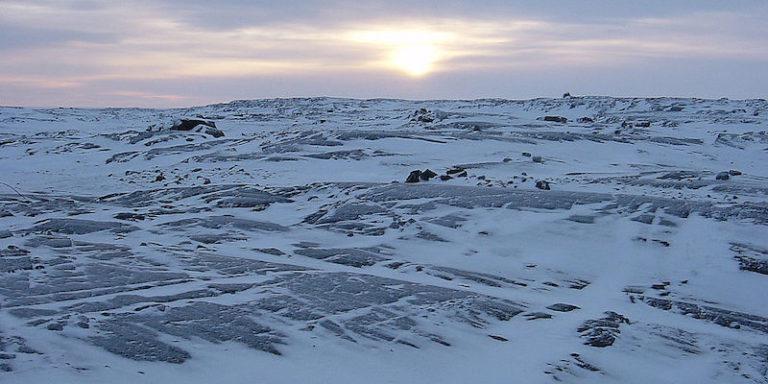 canadian tundra