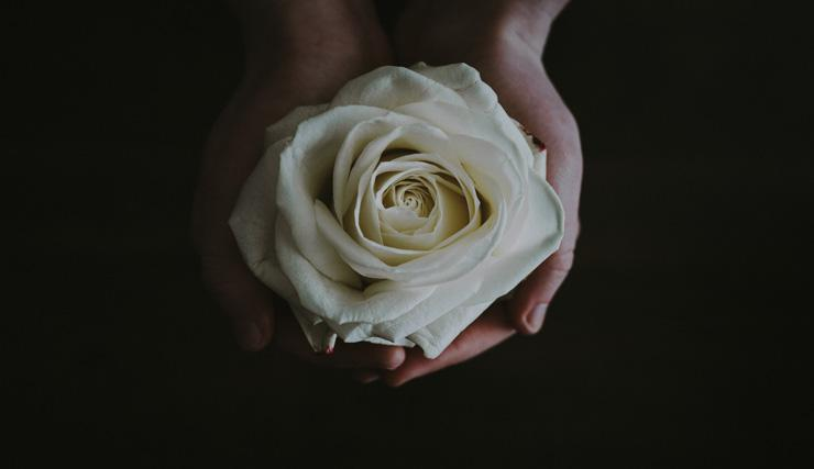 Invest in yourself with self love, by Karamjeet Kaur. Photograph of hands with rose by Annie Spratt