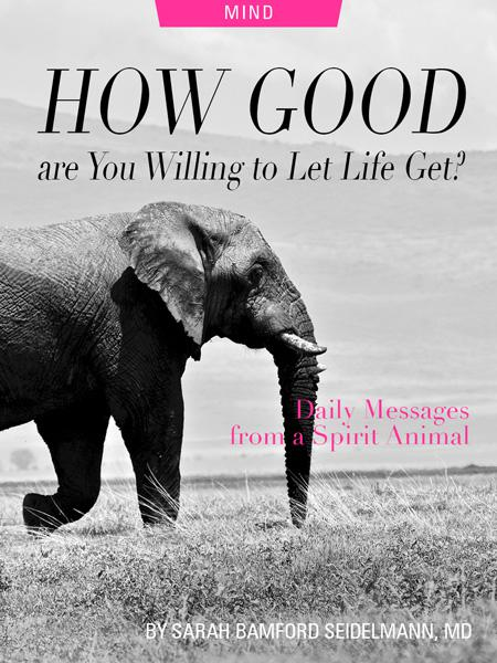 How Good Are You Willing To Let Life Get? Daily Messages From A Spirit Animal, by Sarah Bamford Seidelmann, MD. Photograph of elephant by Parsing Eye