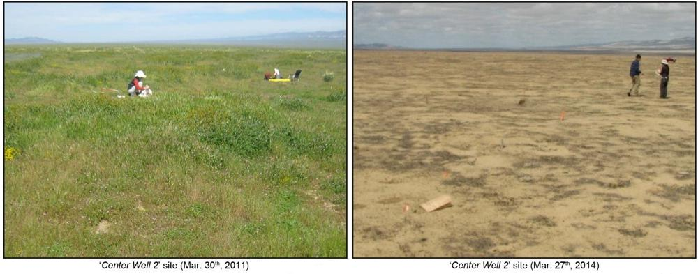 study site in 2011 and 2014