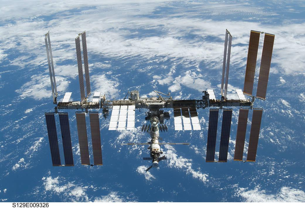 The E. coli samples were sent to the International Space Station to test how they responded to micro-gravity conditions.