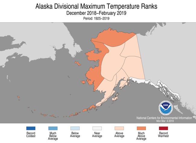 Alaska this winter had above or much above average maximum temperature