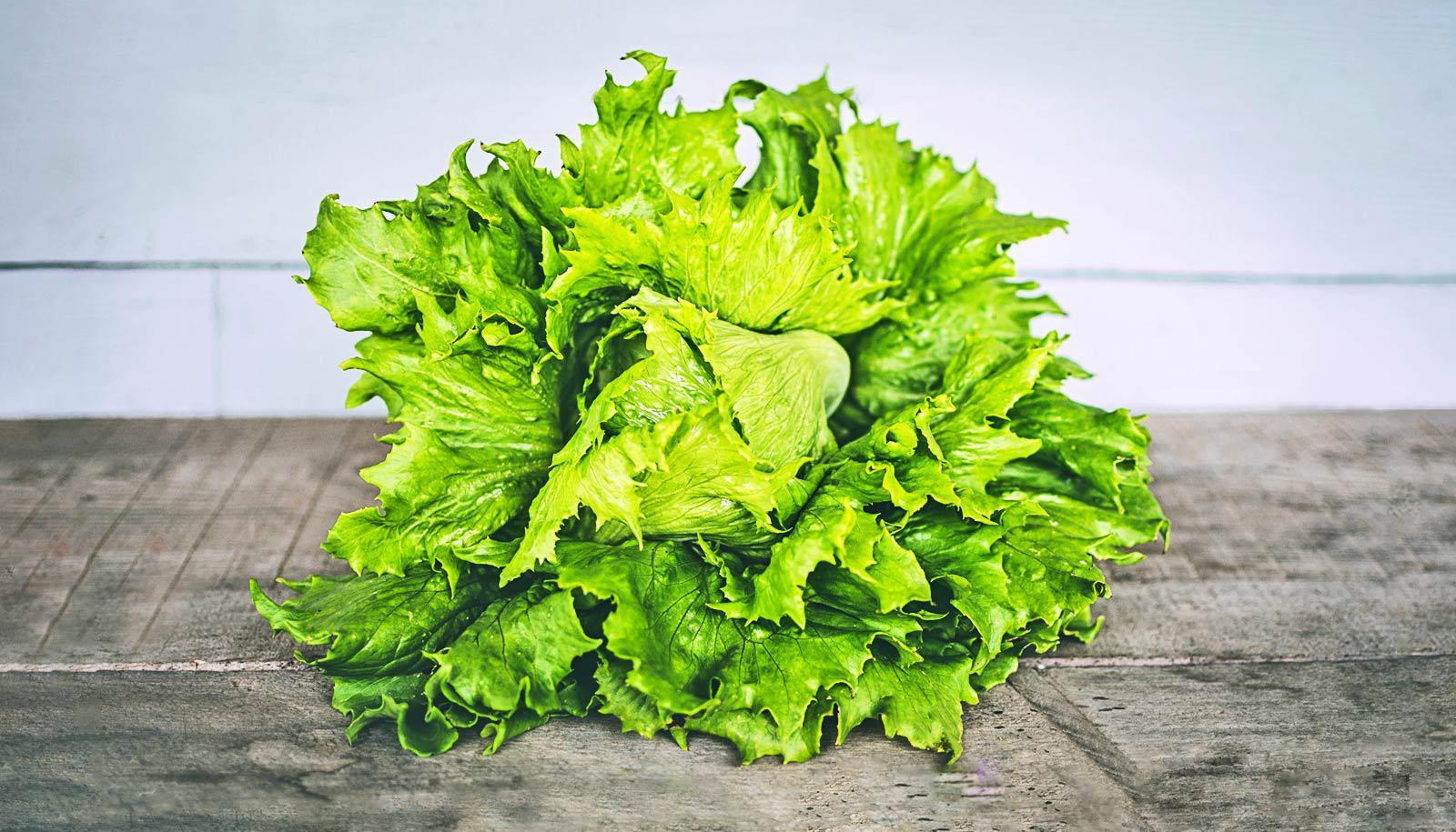 head of lettuce on concrete