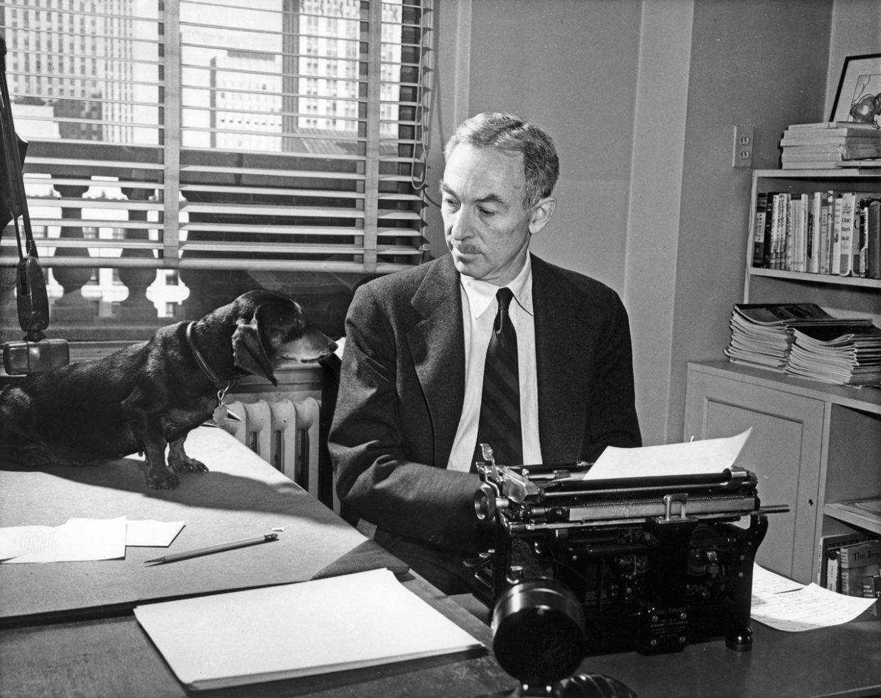 E.B. White dog office