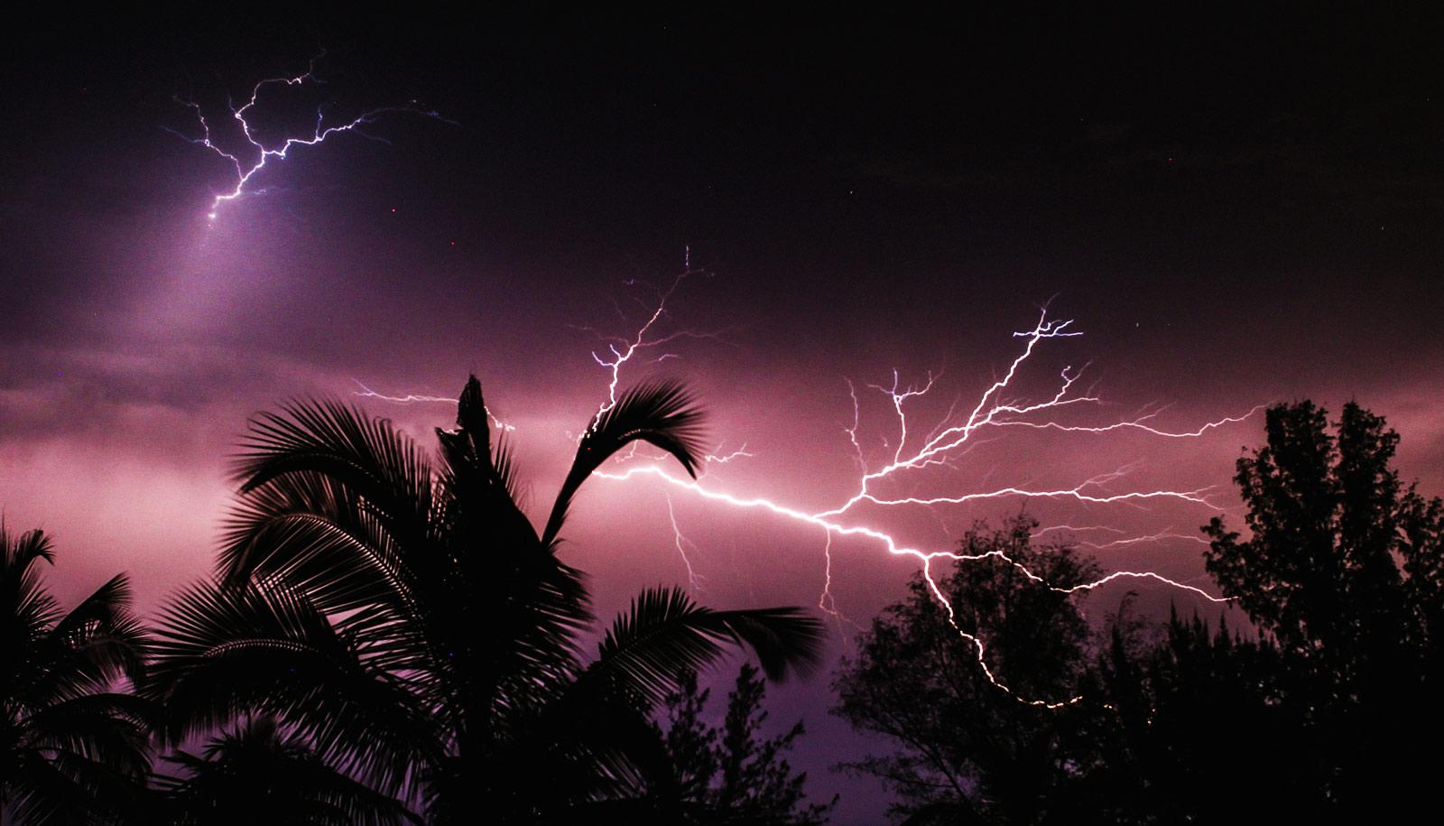 lightning over tropical trees