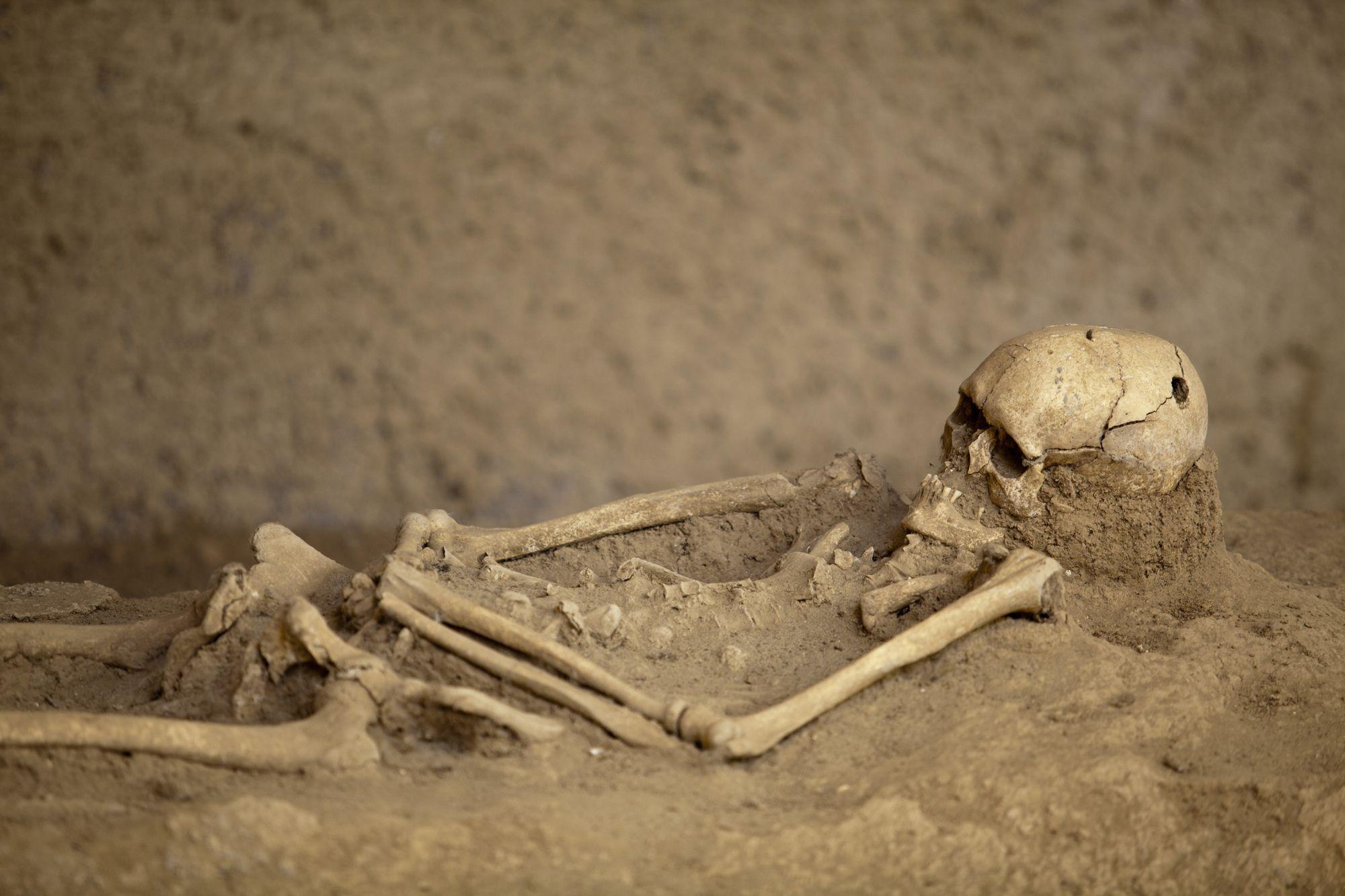 Human remains are just part of the evidence we have for where humanity originated
