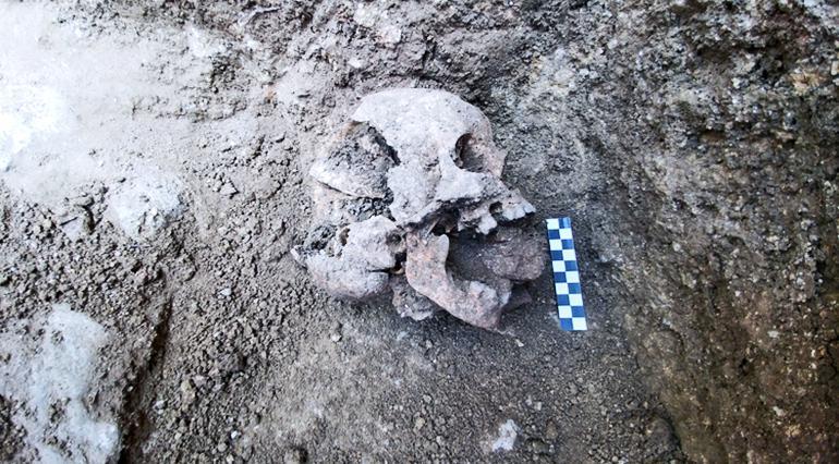 vampire burial skull