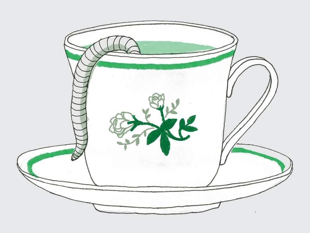 worm tea illustration
