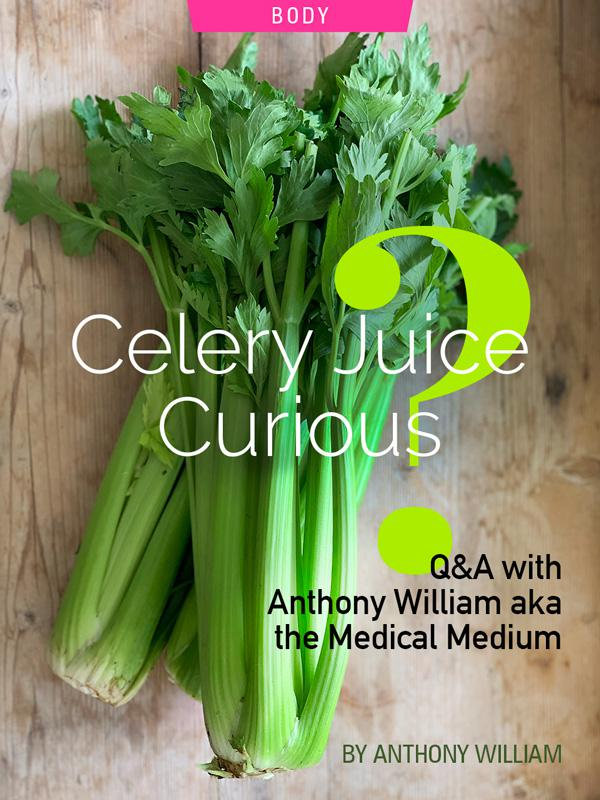 Celery Juice Curious? Q&A With Anthony William aka the Medical Medium. Photograph of celery by Kristen Noel