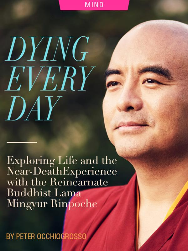Dying Every Day: Exploring Life and the Near-Death Experience with the Reincarnate Buddhist Lama Mingyur Rinpoche, by Peter Occhiogrosso. Photograph of Yongey Mingyur Rinpoche by Kevin Sturm