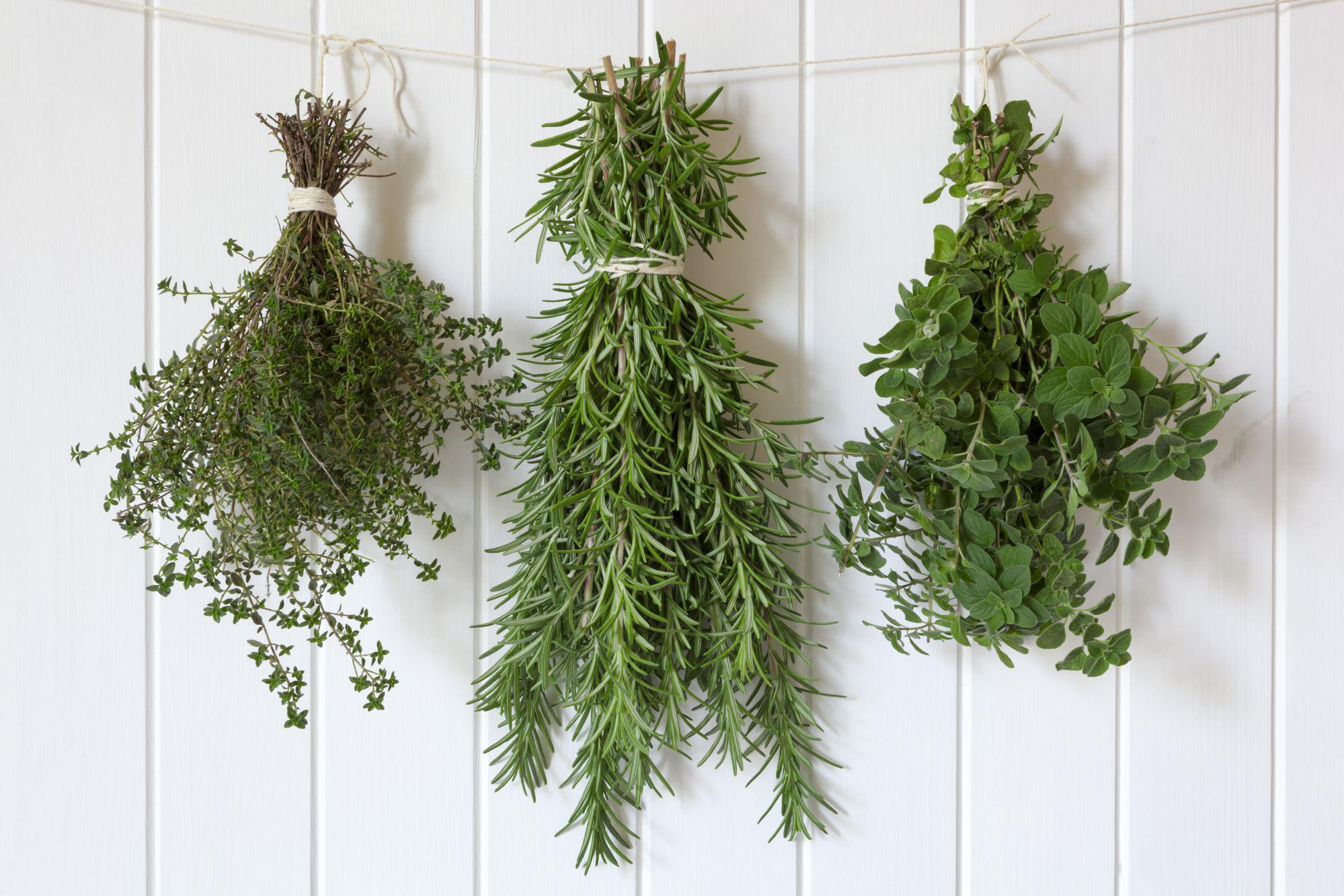 Hanging mistletoe around the holidays is creepy. Hang herbs instead.