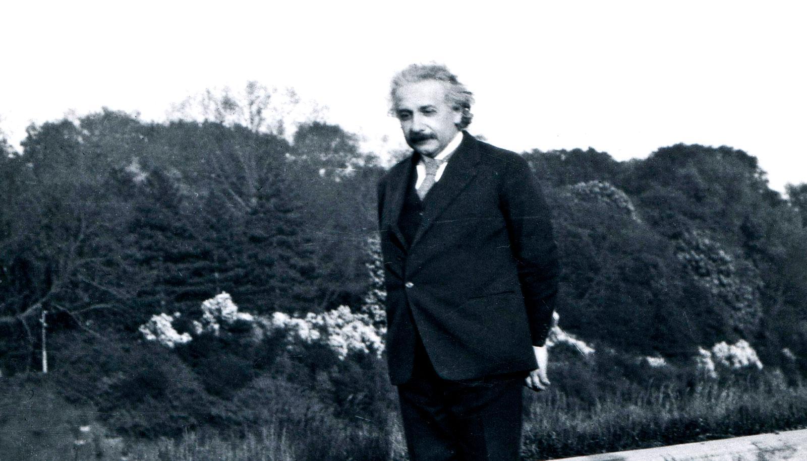 Albert Einstein walks near a line of bushes