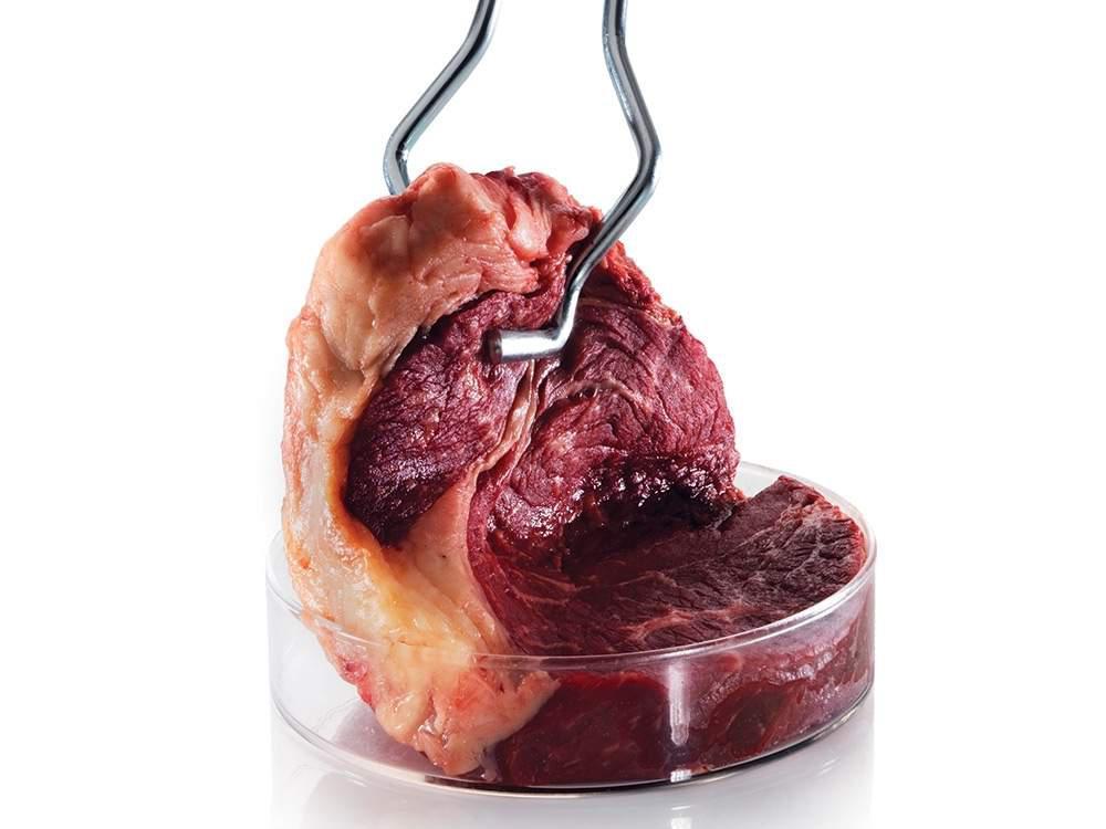 test tube beef