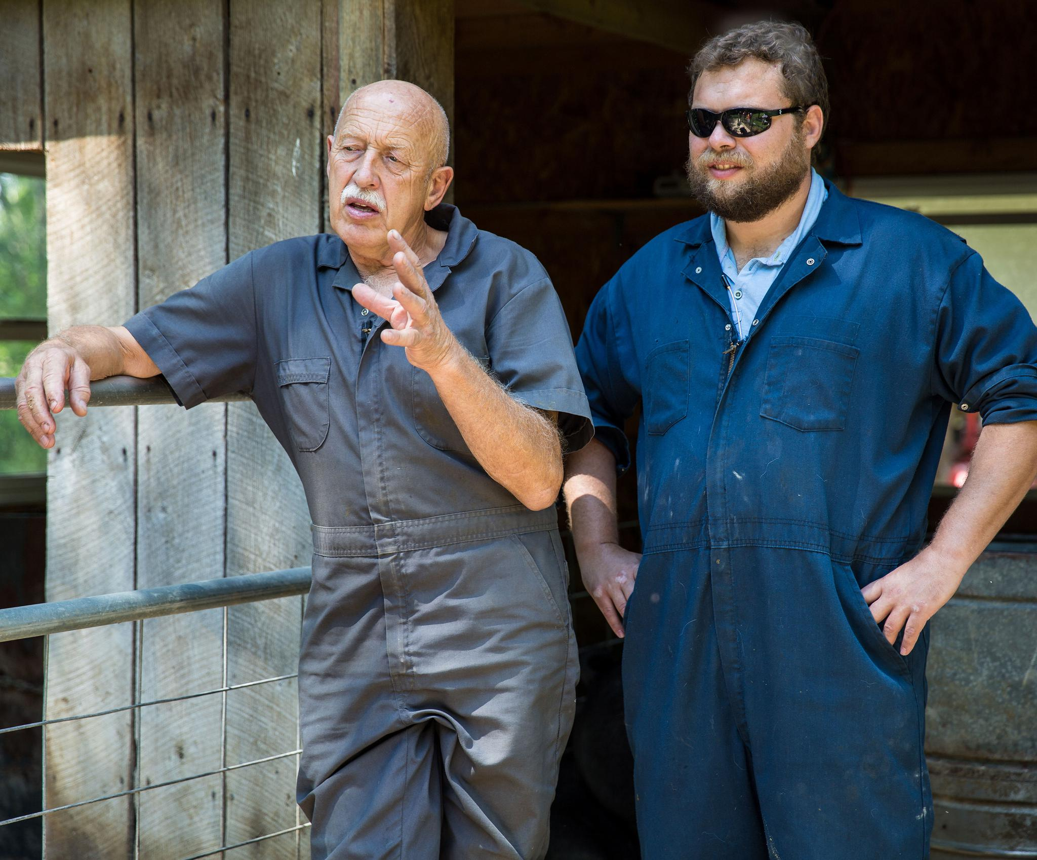 calf pulling and puppy worming rural vet dr pol is reality tv s