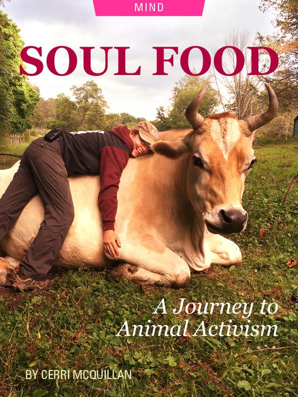 Soul Food: A Journey to Animal Activism by Cerri McQuillan. Photograph of Cerri hugging a cow on the farm